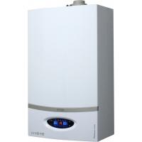 Caldeira de Condensação Platinum